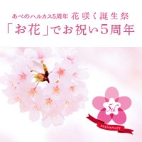 花咲く誕生祭5周年